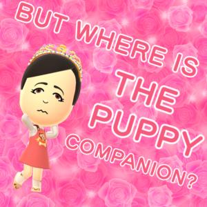 whynopuppycompanion